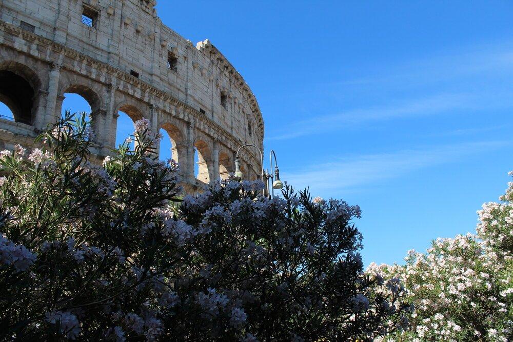 que-ver-en-roma-coliseo-romano-pamy-rojas