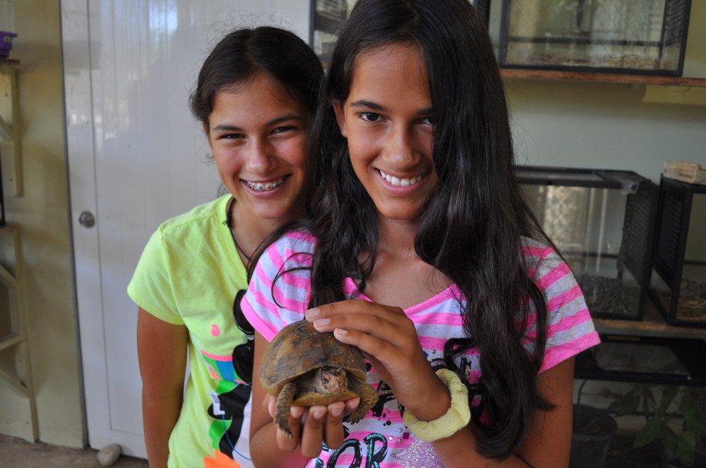 Tortugas, serpientes y monos son solo algunos animales que allí se pueden ver. Foto: Pamy Rojas