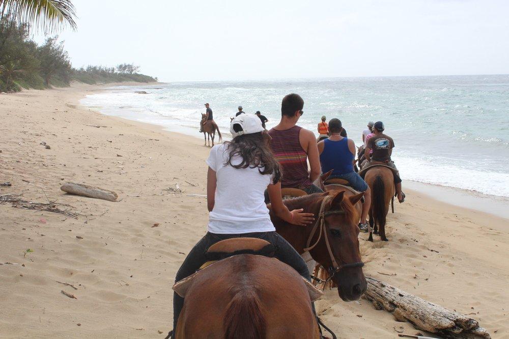 Llegamos hasta la playa Survival Beach en nuestro recorrido a caballo. Foto: Javier Vélez