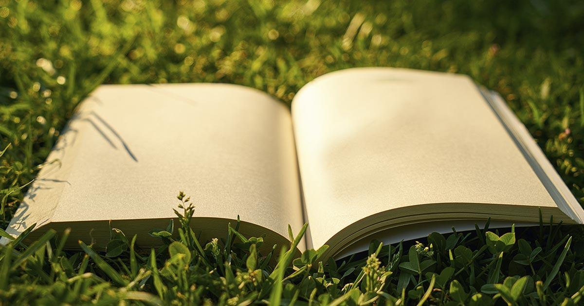 Cuando conectamos con la naturaleza nuestro cerebro se convierte en una página en blanco, listo nuevas ideas.