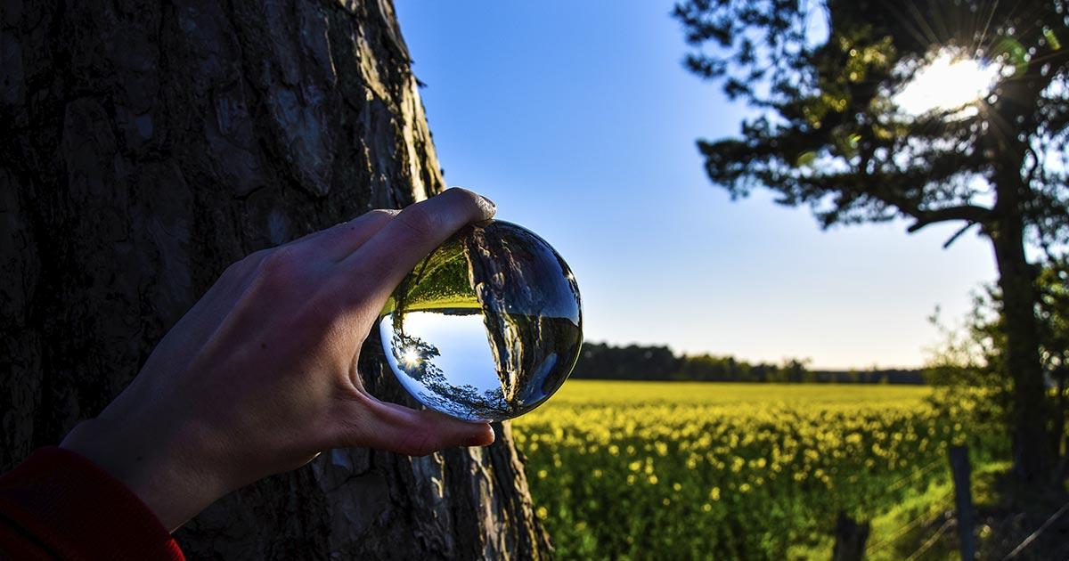 La imaginación es cuestión de perspectiva, de buscar otra forma de ver las situaciones para buscar soluciones de una forma diferente.